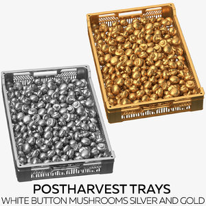 3D postharvest trays white button model