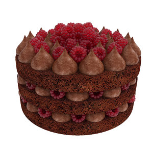3D cake chocolate raspberry