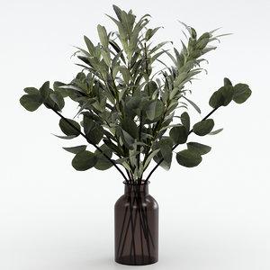eucalyptus bouquet olive 3D model
