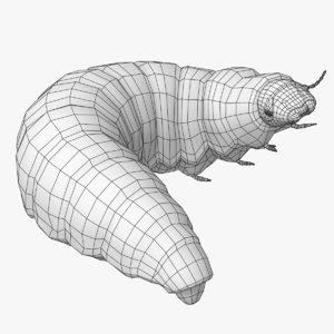 3D model maggot mesh