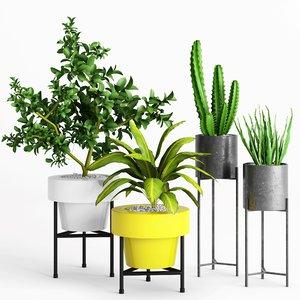 3D planter plants model