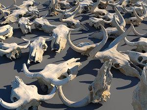 3D animals skeleton skull pack