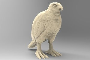 print hawk model