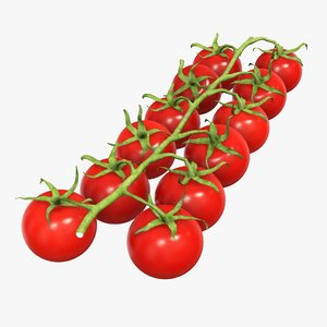 3D branch red tomato