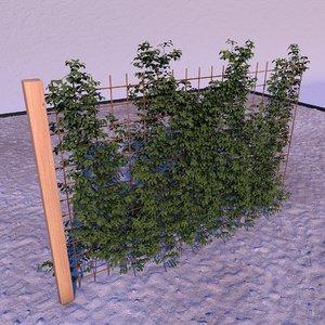 3D fences landscape garden model