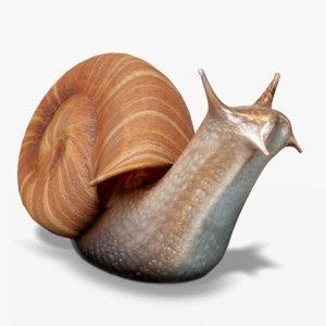 3D snail pbr ready model
