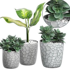 potted plants 68 3D model
