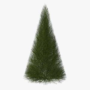 3D model pyramidal bare shrub