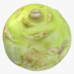 3D model kohlrabi german turnip 02