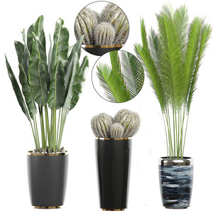 potted plants 71 3D