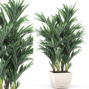 decorative palm white 3D model
