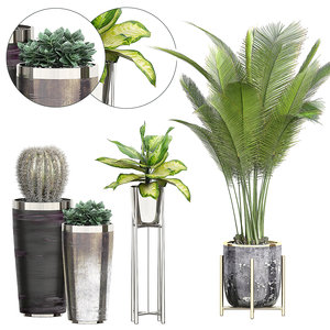 potted plants 72 3D