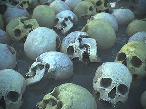 real human skull 3D