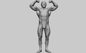 3D bodybuilder anatomy model
