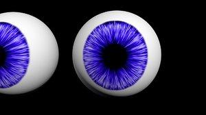 3D eyes model