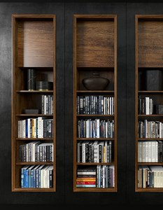 modern bookcase model