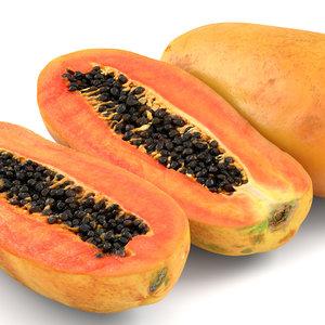 papaya 01 model