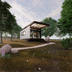 wood house 1 revit 3D model