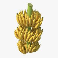 Ripe Yellow Banana Cluster