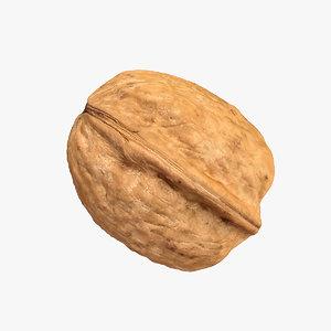 photorealistic walnut model