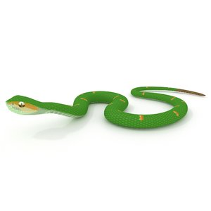 wagler s pit viper 3D model