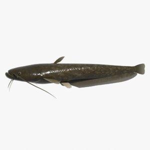 fish namazu 3d model