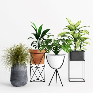 3D model eric planter plant