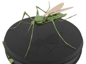 print mosquito 3D