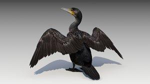 3D model great cormorant