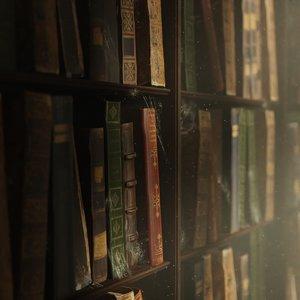 library bookshelf books model