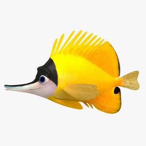 3D rig fish forcipiger