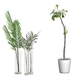 3D potted plants 76 model