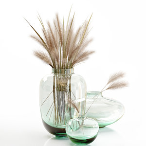 small glass vase dry 3D