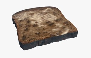 3D cinnamon bread raisin food model