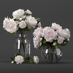 bouquet white pink peony model