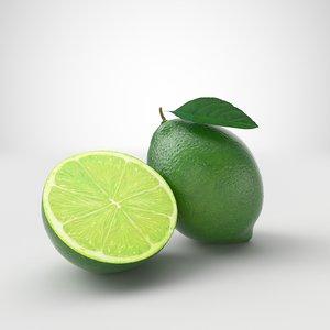 3D model lime