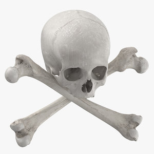 pirate skull bones composition 3D