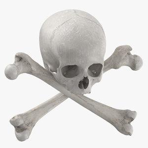 pirate skull bones composition 3D