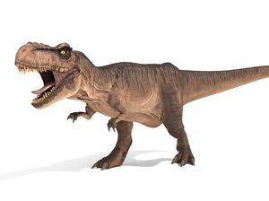 3D model tyrannosaurus rex rigged