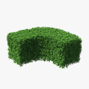 boxwood corner bush model