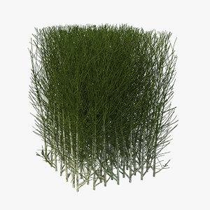 square bush 3D model