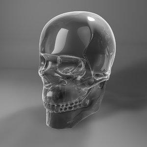 3D toned glass skull l772