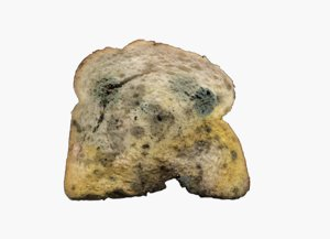 3D bread old mold
