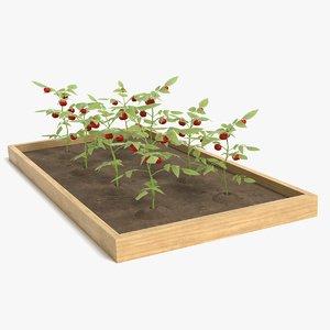 3D garden pbr polys model