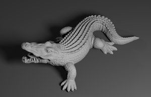 alligator crocodile 3D model