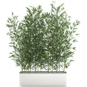 3D bamboo bush interior white model
