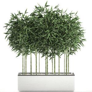 3D bamboo bush interior white