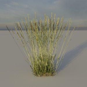 3D nature plants