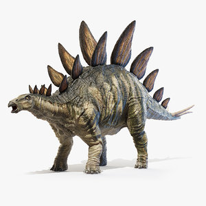3D model stegosaurus stegos