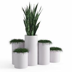 houseplant 46 model